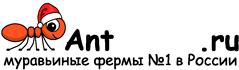 Муравьиные фермы AntFarms.ru - Набережные Челны